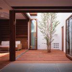 コートハウスの中庭には、ささやかにでも緑を植えると豊かな空間になる (上荻の家)