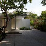 郊外の自然環境豊かな住宅では、自然と共存できるような建物配置を考える (葉山町の家)