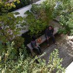 造り付けのベンチがあると、庭がぐっと過ごしやすくなる (武蔵野の家)